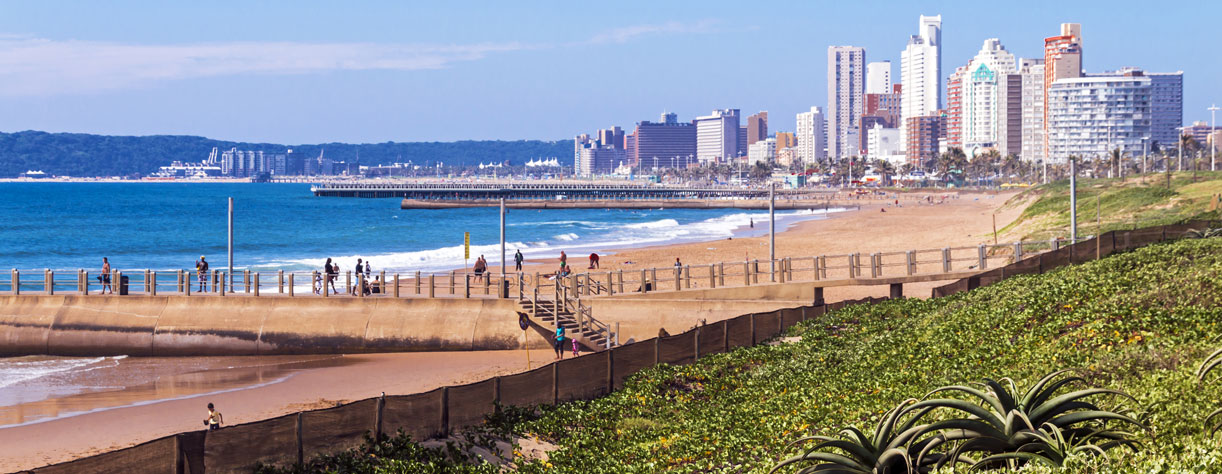 Dune vegetation on Durban beach, South Africa