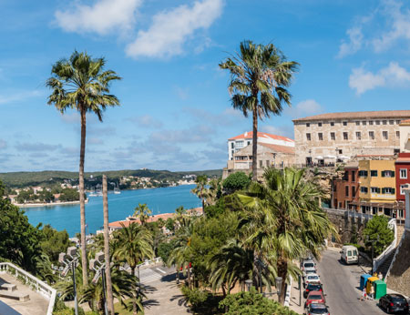 Palm trees and view of old town port in Mahon, Menorca