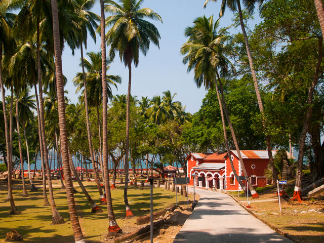 Palm tress and path leading to the beach front of Port Blair, India