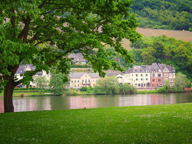 Traditional houses along the Moselle River