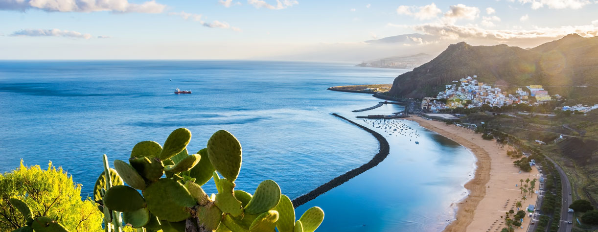 Beautiful coastal view of Santa Cruz, Tenerife
