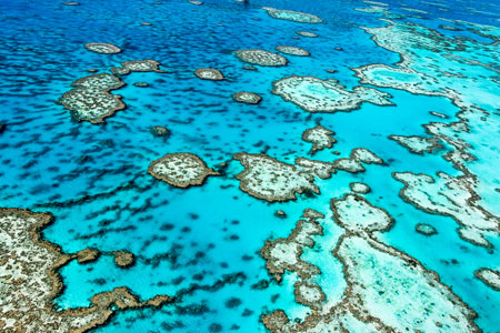 The-Great-Barrier-Reef-in-Queensland,-Australia