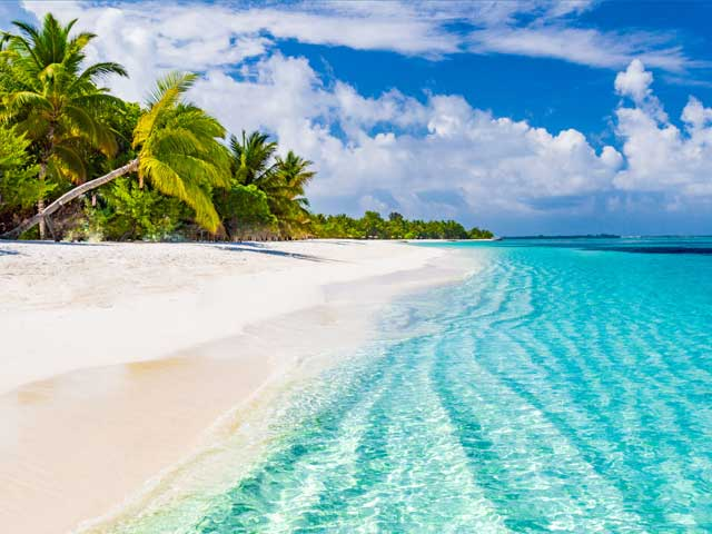 Beautiful beach with palm trees in Maldives