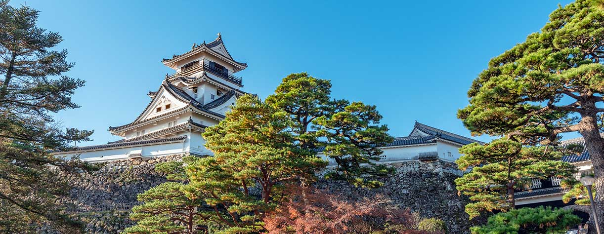 Castle tower of the Kochi castle in Kochi, Japan