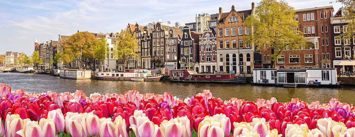 View of the canal in Amsterdam with tulips