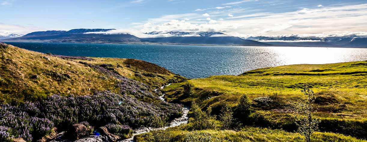 West Fjords of Iceland with picturesque moutains and waterfalls