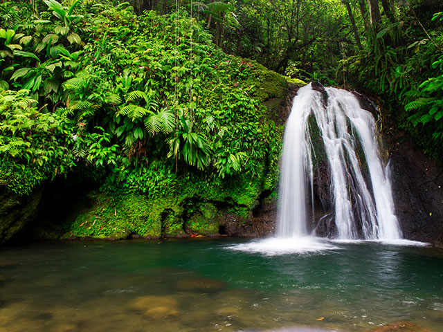 Waterfall in the National Park, Basse-Terre, Guadeloupe