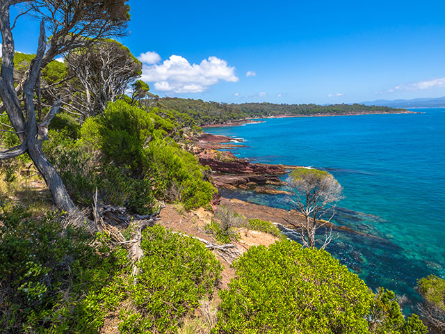 Towfold Bay lookout, inside the Ben Boyds National Park, Eden, Australia