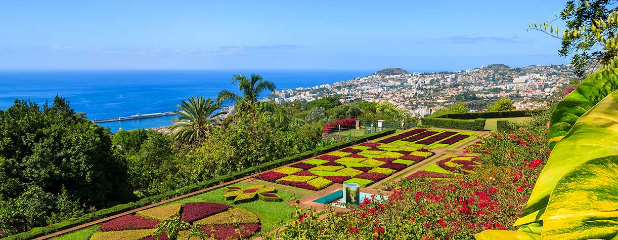View of Botanical gardens Funchal, Madeira